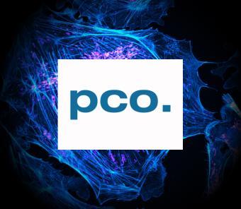 Excelitas Acquires PCO AG in 2021