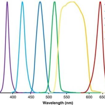 Spectrum of a multi-wavelength LED system